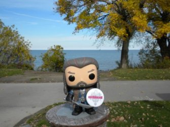 Tree brings Thorin to Lake Ontario