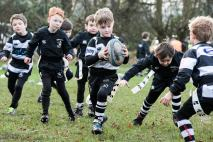 Veseyans Mini & Junior Rugby