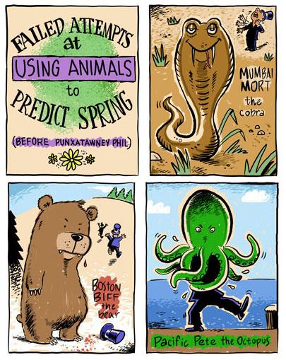 Cartoon of alternate animals to replace Punxsutawney Phil