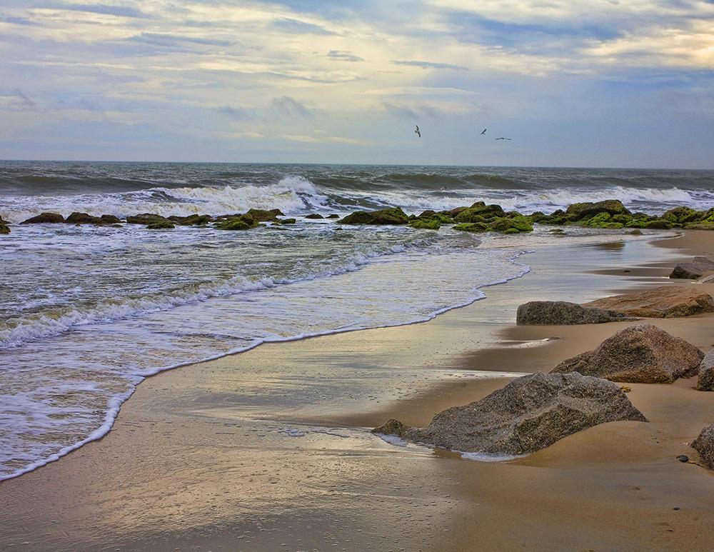 North Carolina Beach, Guy Sagi