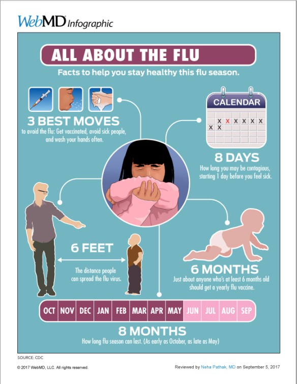 Cold vs. flu symptoms – WebMD   One Regular Guy Writing about Food ...
