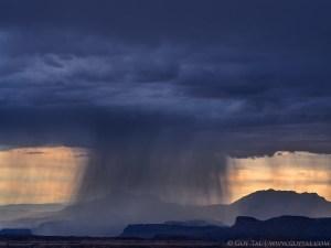 Let It Storm!