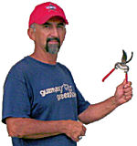 Pruning tips and tools