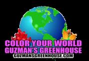 Paul Guzman