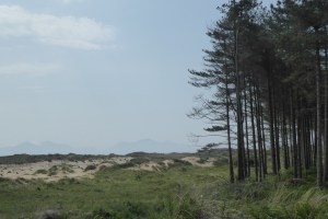 Wales Coast Path, day 85: Malltraeth from Newborough
