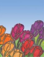 Tulip design phase 1