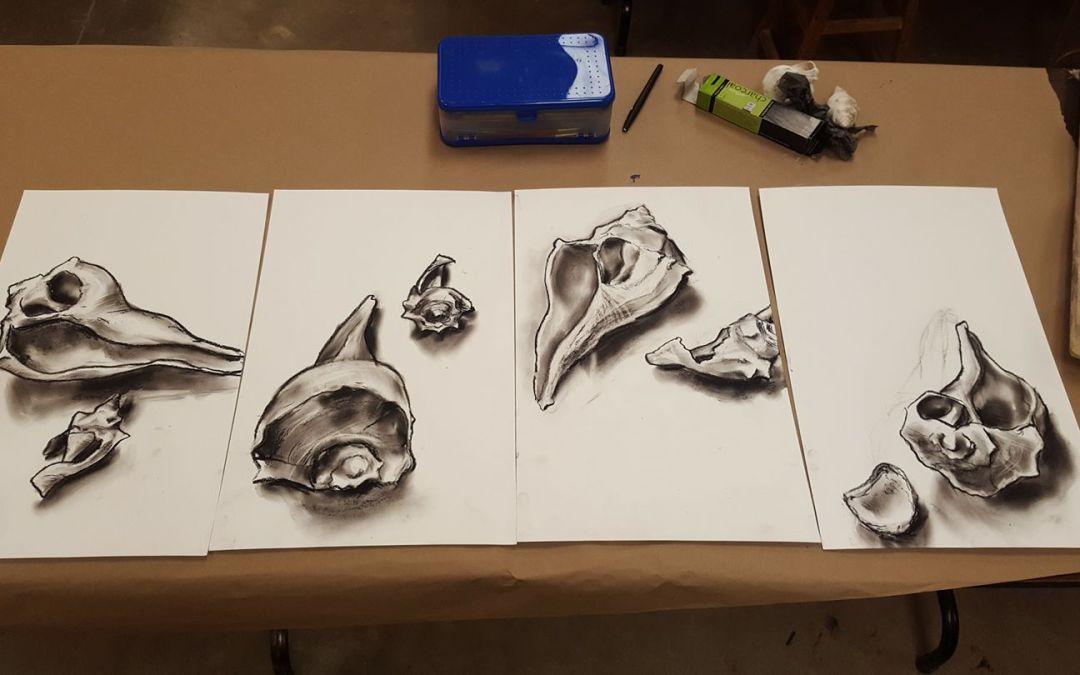 Seashells (Series)