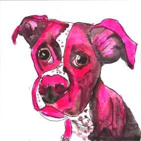 pink dog_1