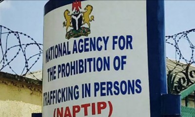 Human Trafficking: NAPTIP Seeks Army Partnership To Boost Capacity