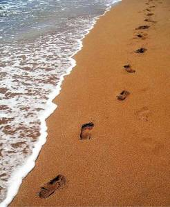 footprints_in_the_sand_op_493x600