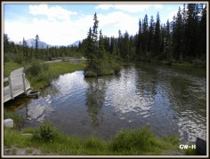 Canmore stream