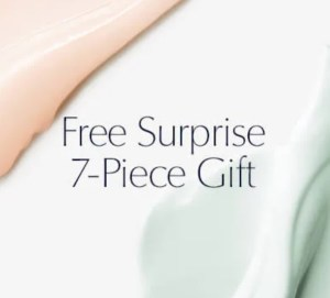 estee lauder surprise gift with purchase