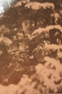 Matt hiding in tree