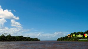 Picture taken of the Essequibo River.