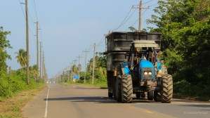 Tractor on the main road...