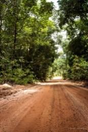 Clear road ahead