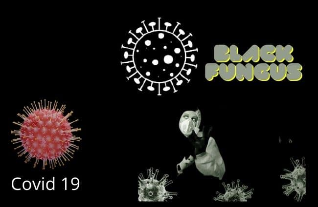 Black Fungus Symptoms