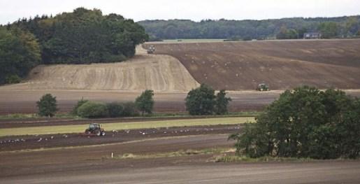 PederStorup_landbrug