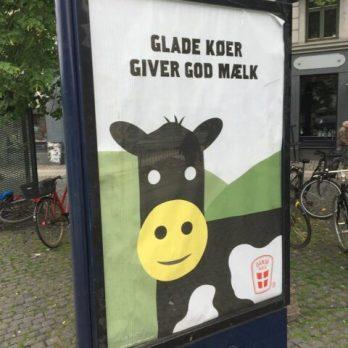 GladKo