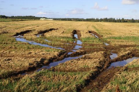 Vådemarker