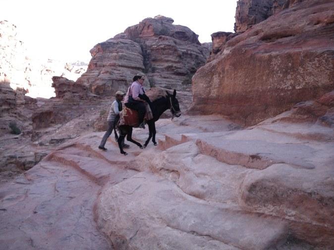 rides on a donkey