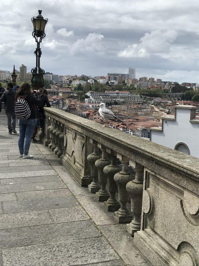 utsikt över Porto