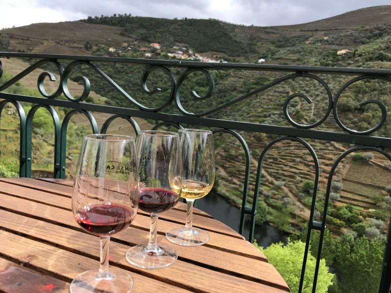 wine tasting in douro vally