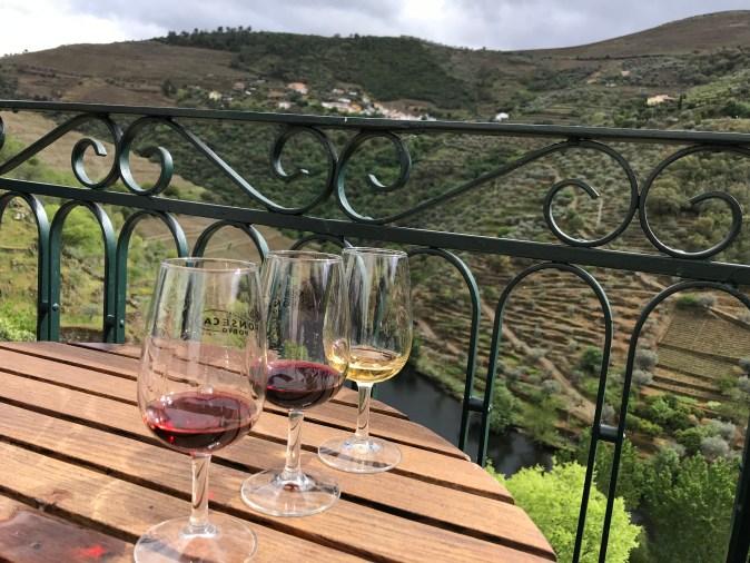 gyllintours på vinprovning i Dourodalen