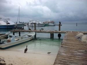 marina in Isla Mujeres