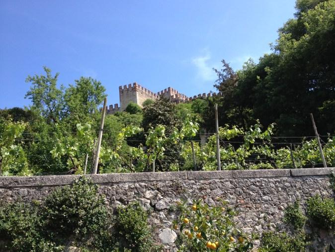 Castle seen from the garden