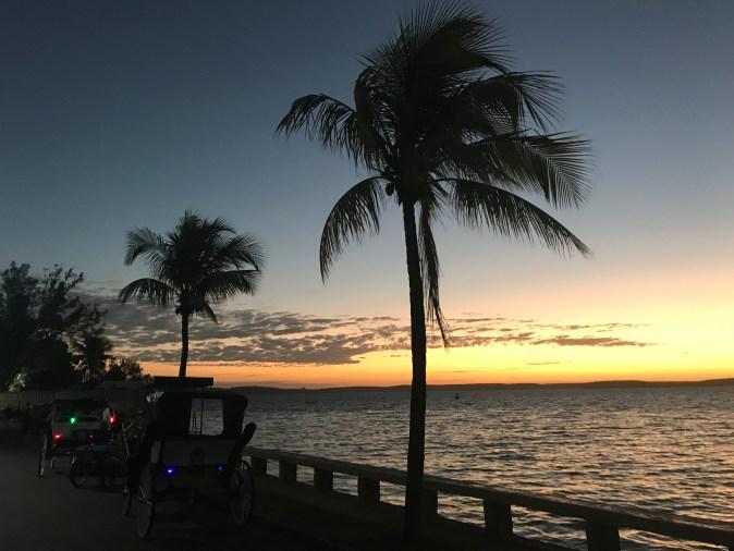 palmer och hav vid solnedgången