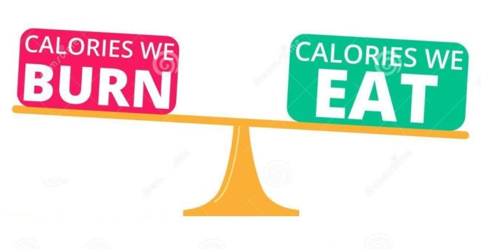 less calorie the best option for weight loss
