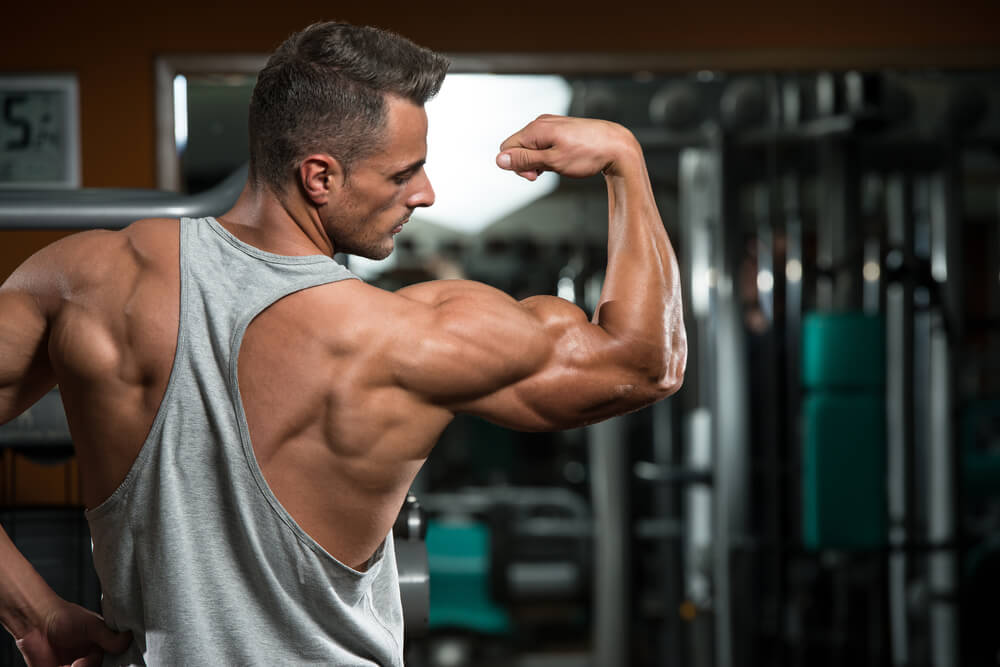 Burn Fat Gain Muscle Tips For Your Workout Plan Gymjunkies
