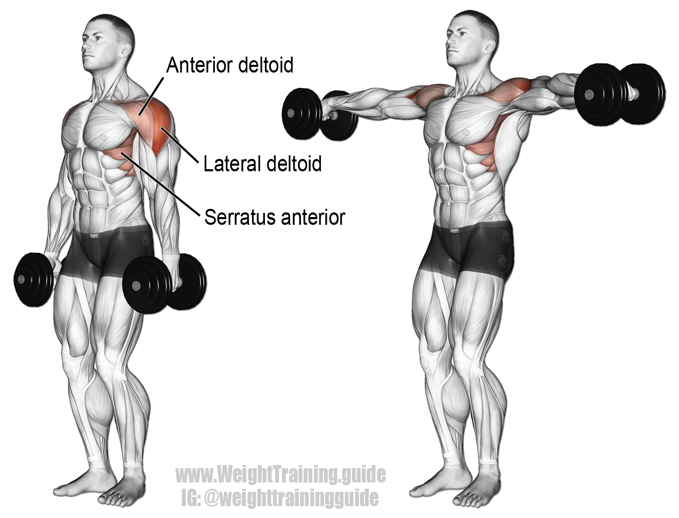 Exercises Opening Chest