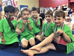 Boys Gymnastics, Tumbling Classes Norwood