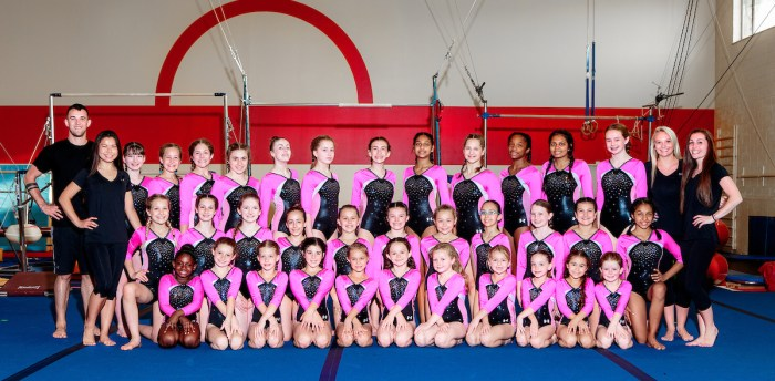 Gymnastics Teams Near Me, Norwood MA