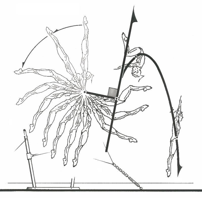 biomechanics – tangent of release