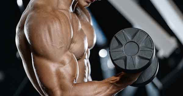 Do 10 exercises and Get Bigger Biceps