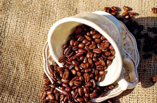Koffein, kávé, kakaó, tea