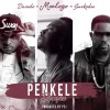 Moelogo -- Penkele Remix Ft. Davido & Sarkodie Cover Art