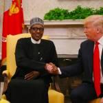PhotoNews: Nigeria's President Muhammadu Buhari Meets Donald Trump At White House