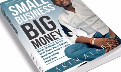Download Small Business Big Money Book By Akin Alabi