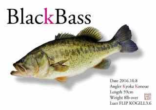 ブラックバス魚拓