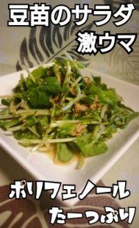 豆苗のサラダが激ウマ!しかも簡単!