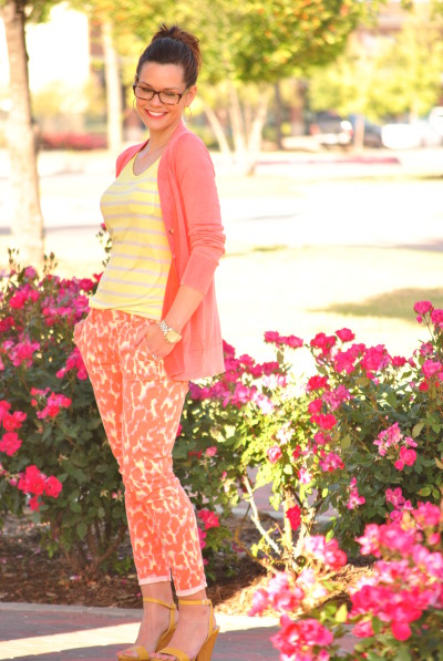 Bold Colors and Pattern Mixing