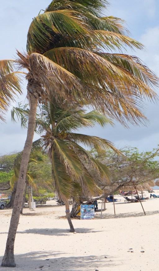 Eagle_Beach_Aruba