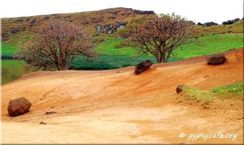 Rano Rarako - inside the crater - lakeside - entrance area - sand, stones and trees