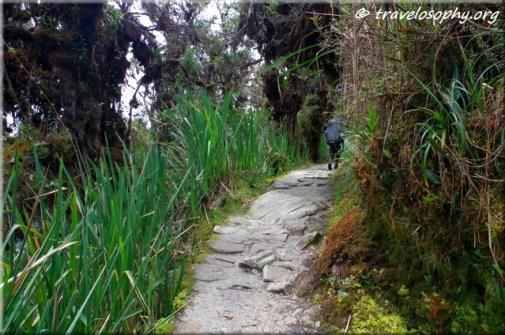 Inca Trail View 19