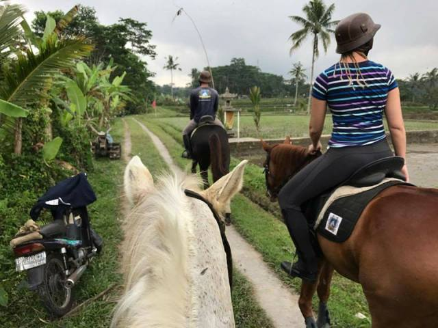 ubud horse riding bali