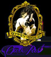 Gypsy Gold Past Horses